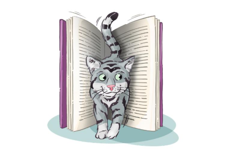 Buchtipp: Katze Betriebsanleitung von Dr. David Brunner und Sam Stall