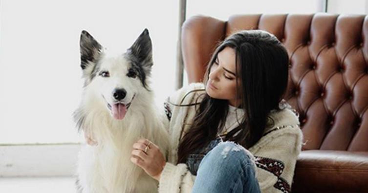 Singles mit Hund suchen Singles mit Hund!