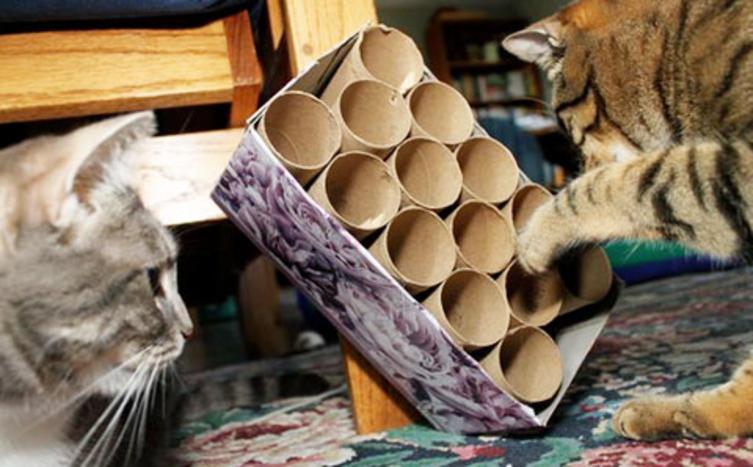 Katzenspielzeug selber machen – Teil 1