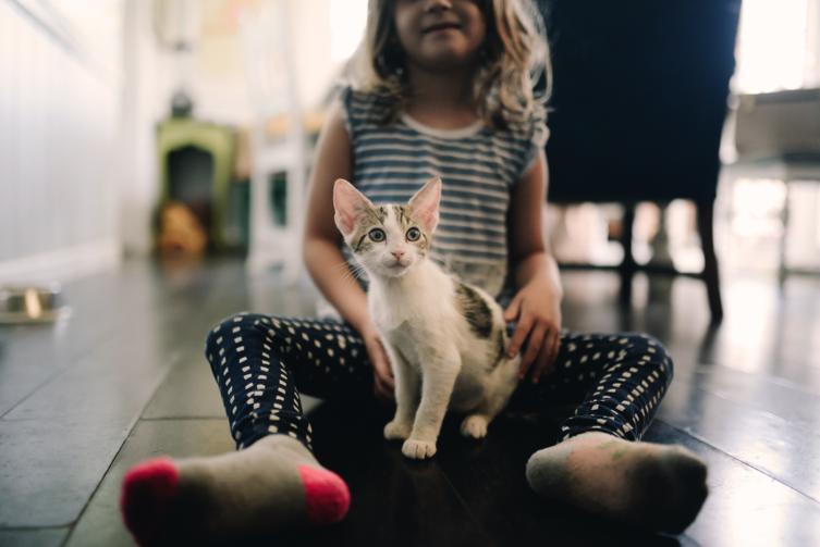Katzen und Kinder: Das solltest Du beachten