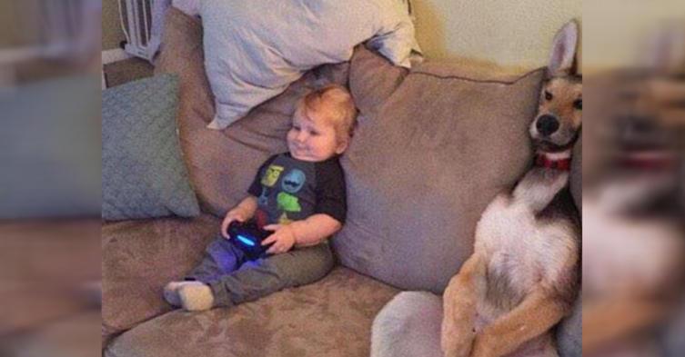 Genialer Schnappschuss: Baby und Hund versinken gemeinsam im Sofa