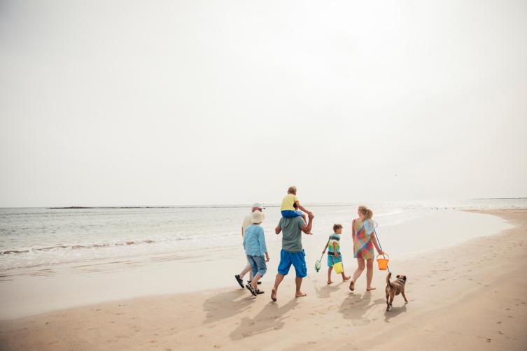 Die 10 schönsten Reiseziele mit Hund