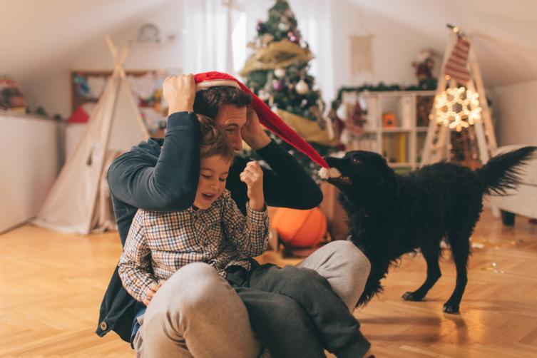 Urlaubsbetreuung für Hunde – Ferien für Deinen Vierbeiner