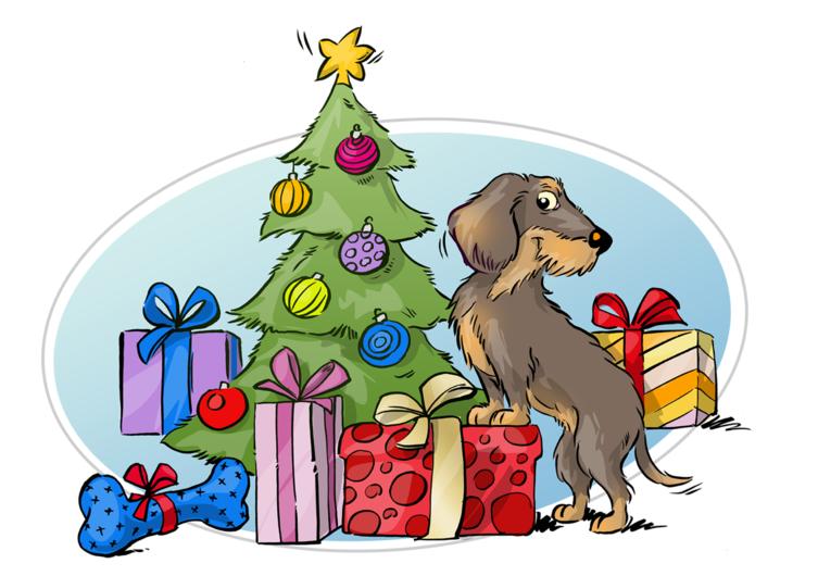 Wastis Welt: Aufregende Weihnachtszeit