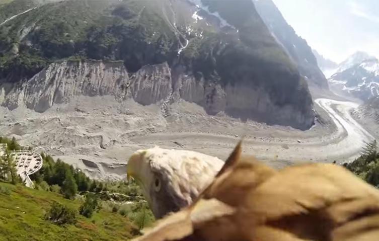 Atemberaubend: So sieht die Welt aus Sicht eines Adlers aus