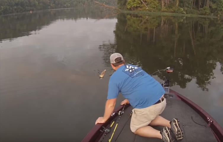 Außergewöhnliche Tierrettung: Angler fischen zwei kleine Kätzchen aus dem Wasser