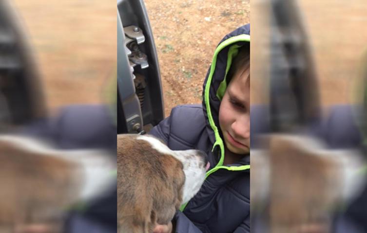 Einfach rührend: Wiedervereinigung eines kleinen Jungen mit dem Familienhund