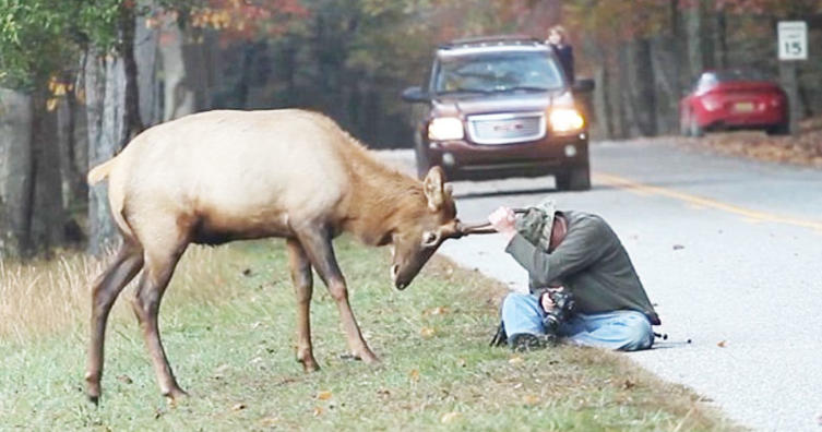 Eine lebensbedrohliche Situation, aber dieser Fotograf hat fast alles im Griff..